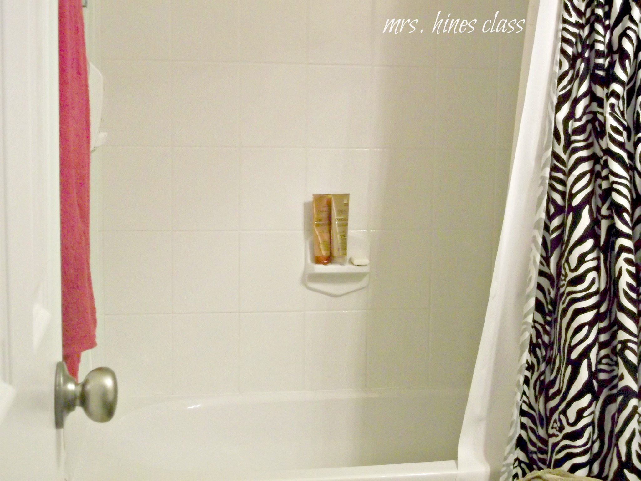 DIY Shower Cleaner - Mrs. Hines\' Class